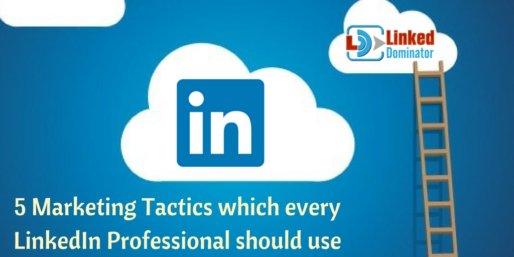 5-Marketing-Tactics-which -every-LinkedIn -Professional- should -use